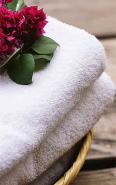 Beautiful Flower & Leaves on Towel